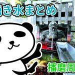 【保存版】全8ヵ所!播磨周辺の湧き水まとめ(地図リンク付き)